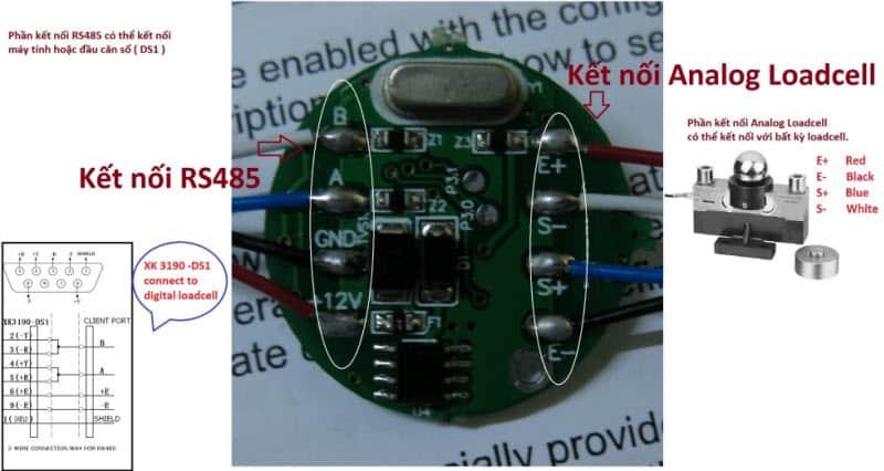 Kết nối đầu cân kỹ thuật số DS1 với board số